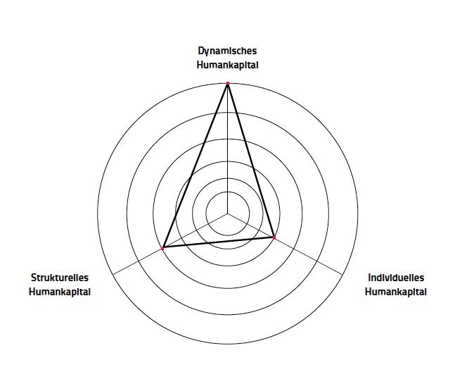 Diagramm zur Darstellung des Humankapitals in verschiedenen Dimensionen