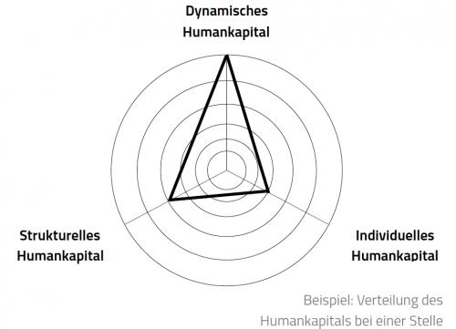 Beispielhafte Verteilung des Humankapitals bei einer Stelle